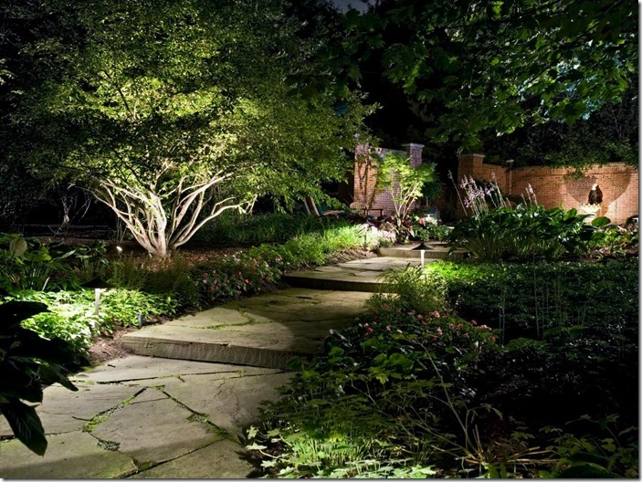 Garden lights: How to Design a Garden Lighting Scheme