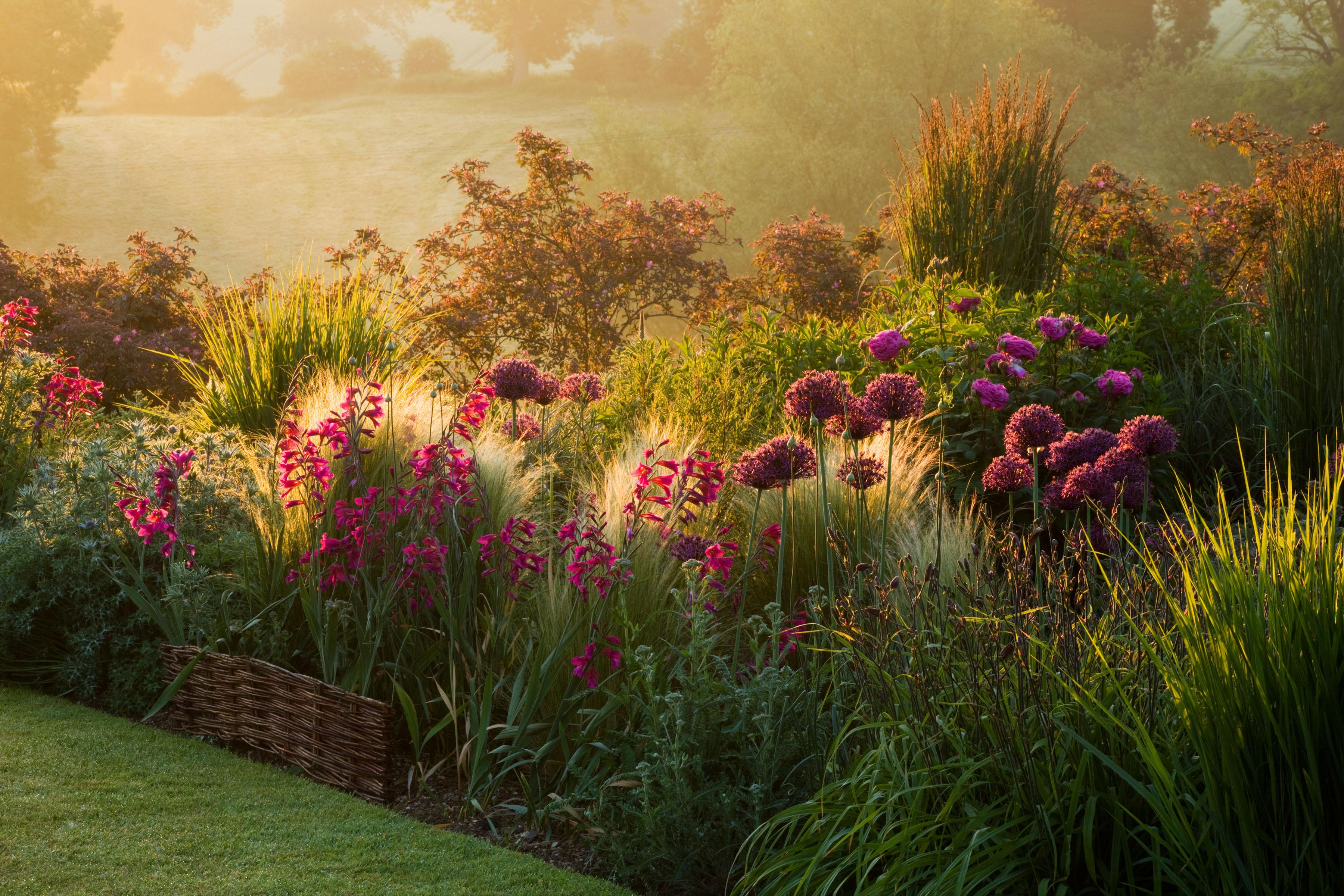 Garden Designer Interview: Duncan Heather - Oxford College ...