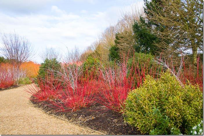 Winter Garden Structure - Oxford College of Garden Design