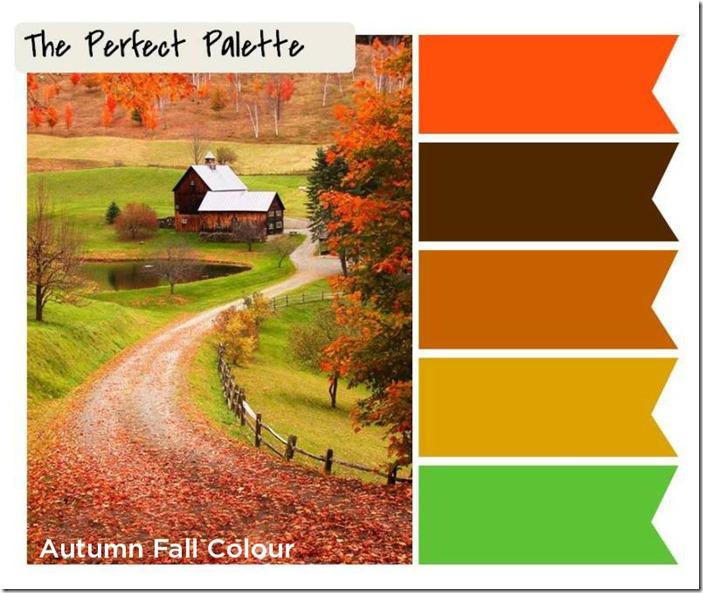 Autumn fall a design palette of bright orange chocolate for Landscape design courses