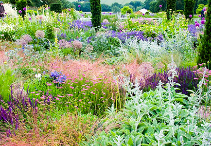 Garden design courses online and landscape design courses for Landscape design training